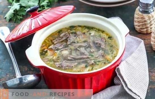 Klassische russische Küche - frische Kohlsuppe mit ...