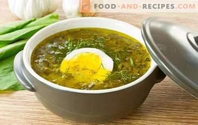 Sauerklee-Suppe mit Ei: Schritt für Schritt Rezepte von Herzhaft bis Diät. Sauerrahmsuppe mit Ei, Reis, Käse und Haferflocken zusammen kochen