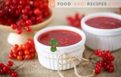 Viburnum Jelly ist sowohl ein Genuss als auch ein Medikament. Viburnum-Gelee als Nachtisch und für den Winter ohne Steine und ohne Kochen mit Kürbis und Honig