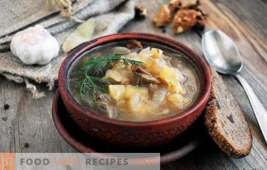 Fastensuppe - zum Fasten und Diäten sind gut! Die besten traditionellen und originellen Rezepte für magere Fleischsuppe ohne Fleisch und Tierfett