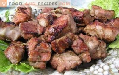 Marinade für Schweinefleisch Kebab mit Kefir - zart! Marinade-Rezepte für Fleisch am Feuer: Marinade für Schweinefleisch mit Kefir