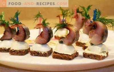 Heringsnack - Menü für den Feiertagstisch. Möglichkeiten zur Gestaltung von Imbissgerichten von Hering