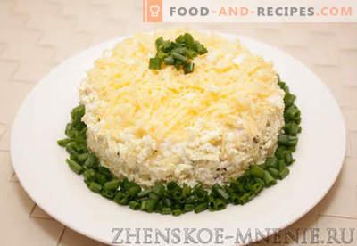 Schichtsalat - ein Rezept mit Fotos und Schritt für Schritt Beschreibung