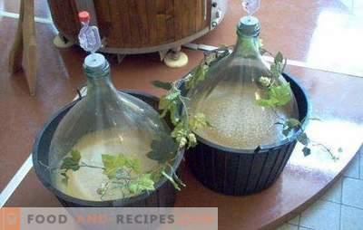 Braga aus Trauben ist eine heimatlose Weinbereitung. Drei Rezepte Schnaps mit einem nationalen Geschmack von Bragi auf Trauben