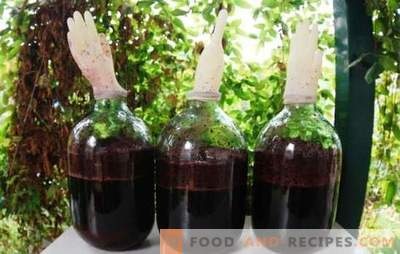 Homemade grape wine with a glove - a way out! Technology of making homemade grape wine with a glove