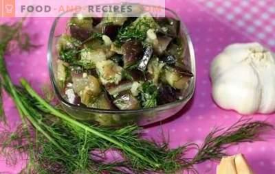 Auberginenartige Pilze: Einfache und schnelle Rezepte für den Winter. Wie kann man Auberginen für den Winter so kochen, dass sie nach Pilzen schmecken?