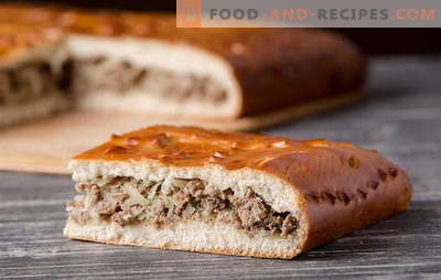 Hefeteig-Fleischpasteten: detaillierte Rezepte. Alte Traditionen und neue Ideen für Pasteten mit Hefeteigfleisch