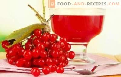 Zu Hause aus Viburnum gießen: bittersüße Rezepte russischer Liköre. Rezepte ausgezeichneter hausgemachter Likör aus Viburnum