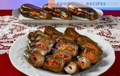Eingelegte Auberginen - schnell, lecker, duftend! Alle Methoden zum Kochen schnell und lecker eingelegte Auberginen