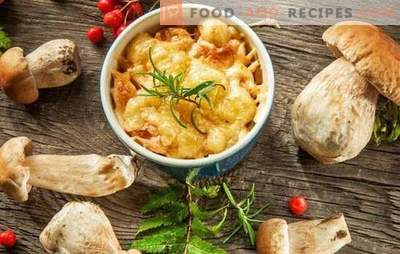 Julienne mit Champignons und Käse - französische Suppe? Unglaubliche Abenteuer einer Julienne mit Pilzen und Käse in Russland