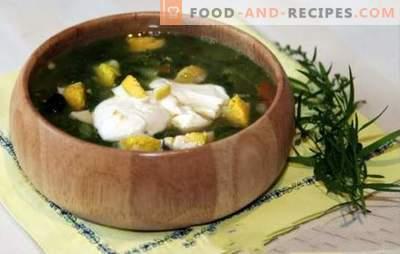 Sauerampfer Suppe in Hühnerbrühe - Frühlings-Sommer-Menü. Sauerrahmsuppe mit Hühnerbrühe - schnelle Rezepte für erste Gänge mit gesundem Rationalismus