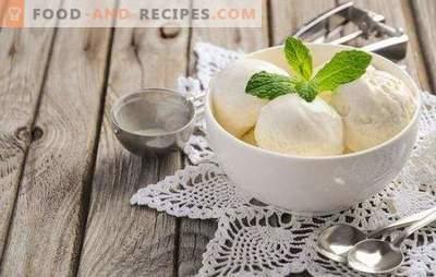 Speiseeis aus Milch zu Hause ist ein Naturprodukt! Rezepte leckeres Eis aus Milch zu Hause