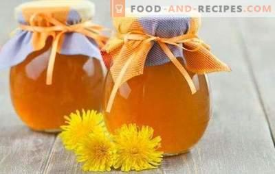 Löwenzahnsirup - Zubereitung von Vitaminen! Rezepte nützlicher Sirup aus Löwenzahn mit Zucker und Zitrone, Gewürzen, Ingwer, Honig