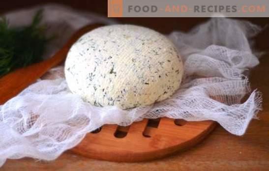 Kefirkäse zu Hause - lecker, sparsam, gesund. Wie man verschiedene Arten von Kefir-Käse zu Hause herstellt