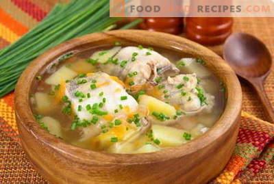 Fischsuppe - die besten Rezepte. Wie man richtig und lecker Fischsuppe kocht.
