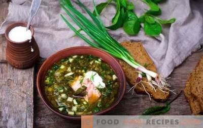 Russische Okroschka ist eine alte Suppe! Rezepte der traditionellen russischen Okroschka auf Kwas, Molke, Brühe, Joghurt