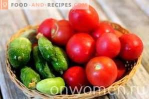 Tomaten- und Gurkensalat für den Winter
