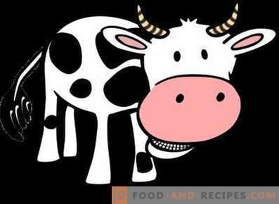 Rindfleisch: Nutzen und Schaden für den Körper