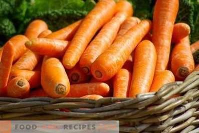 Karotten: Nutzen und Schaden für den Körper