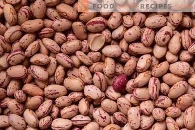 Comment stocker les haricots