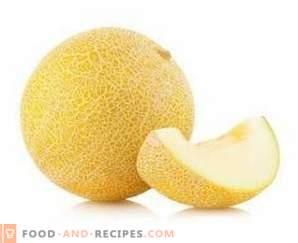 Melone: Nutzen für die Gesundheit und Schaden