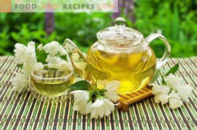 Grüner Tee mit Jasmin: gut und schädlich