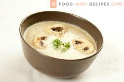 Crema di champignon e formaggio fuso