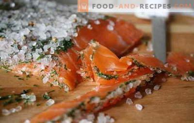Wie kann man Fisch zu Hause salzen? Die besten Möglichkeiten, roten Fisch zu Hause zu salzen