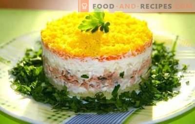 Mimosa-Salat mit Fischkonserven ist bereits ein Klassiker! Wie man einen Salat