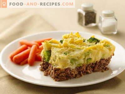 Auflauf mit Fleisch - die besten Rezepte. Wie man richtig und lecker Fleischkasserolle kocht.