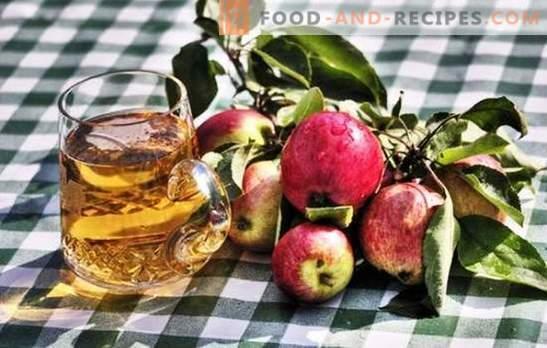 Selbstgemachten Apfelwein herstellen - Naturprodukt! So bereiten Sie das Rohmaterial für den Apfelwein zu Hause vor