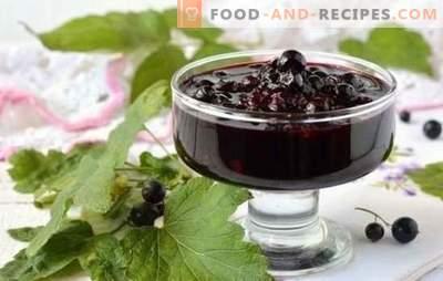 Johannisbeermarmelade in einem langsamen Kocher: Rezepte für leckere Köstlichkeiten. Wie man rote und schwarze Johannisbeermarmelade in einem Langsamkocher