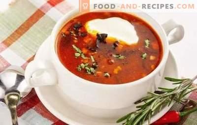 Solyanka classic ist ein Restaurantgericht im Hauptmenü. Klassisches Hodgepodge für Fische und Fleisch