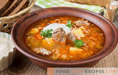 Frische Kohlsuppe - 10 beste Rezepte. Versionen von Kohlsuppe mit Rindfleisch, Huhn, Schweinefleisch, geräuchertem Fleisch, Bohnen