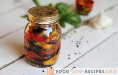 Zaren-Snack für den Winter - originell und wunderschön! Zubereitungsvarianten des königlichen Imbisses für den Winter mit Auberginen, Tomaten, Kohl und Bohnen