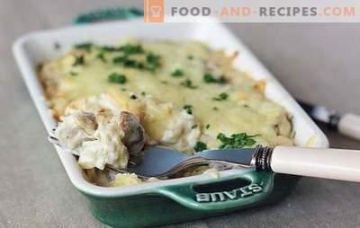 Gebratene, gebackene oder geschmorte Kartoffeln mit Champignons in Sauerrahm: Niemand ist gleichgültig! Einfache Rezepte von Kartoffeln mit Champignons in Sahne