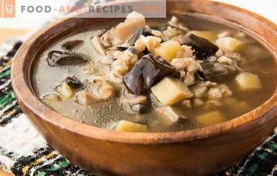 Pilzsuppe aus gefrorenen Pilzen - der Duft des Herbstes! Die besten Rezepte der Pilzsuppe aus gefrorenen Pilzen