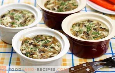 Pilze mit Sahne - nur mit Geschmack. Die besten Rezepte von Champignons mit Sahne: gebraten, gedünstet, gebacken, in Töpfen