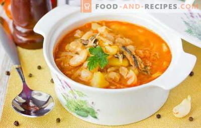 Sprattensuppe in Tomatensauce ist eine günstige Version eines leckeren Mittagessens. Bewährte Rezepte für Sprotten-Suppe in Tomatensauce