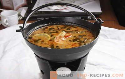Thailändische Suppe ist in Ihrer Küche exotisch. Rezepte für thailändische Suppen mit Rindfleisch, Fisch, Huhn, Meeresfrüchten, Gemüse und Pilzen