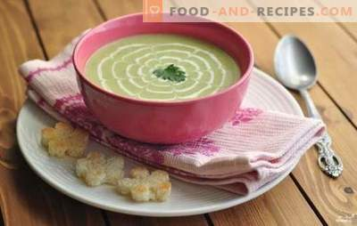 Zucchinisuppe - ungewöhnlich, aber lecker! Rezepte Suppen, Zucchini-Püree, c-Tomaten, Käse, Honig, Minze, Hähnchen, Gemüse und Pilze