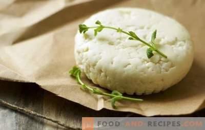 Wie man Ziegenkäse zu Hause macht: einfache Rezepte. Ziegenkäse herstellen: Empfehlungen