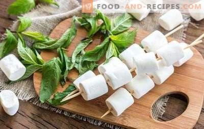 Pastille aus Äpfeln - cooler als jede Süßigkeit! Wie man Apfelfruchtsüßigkeiten zu Hause und Gerichte damit kocht