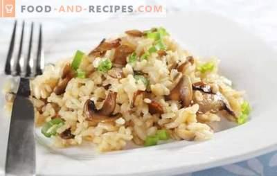 Risotto in einem langsamen Kocher - ein Gericht aus Italien. Risotto-Rezepte in einem Multikocher mit Pilzen, Hähnchen, Gemüse, Speck