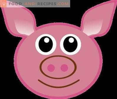 Schweinefleisch: Nutzen und Schaden für den Körper