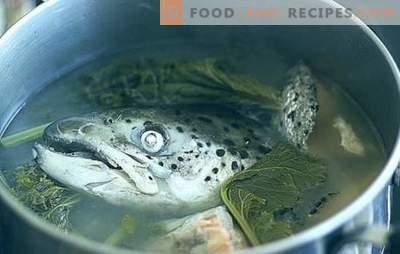 Fischkopfsuppe - Rezepte und kochende Feinheiten. Suppen aus Fischköpfen mit Reis, Hirse, Gemüse