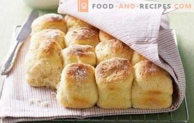 Kefirgerichte: Desserts, Getränke, Käse, das können Sie aus Kefir machen. Gebäck aus abgelaufenem Kefir - ein Muss!